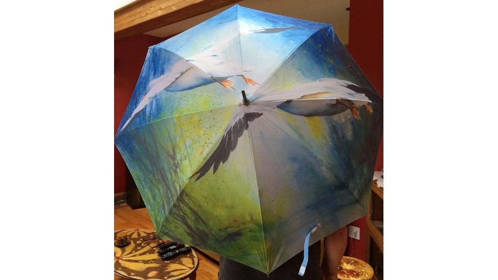 Parapluie - Un peu plus haut